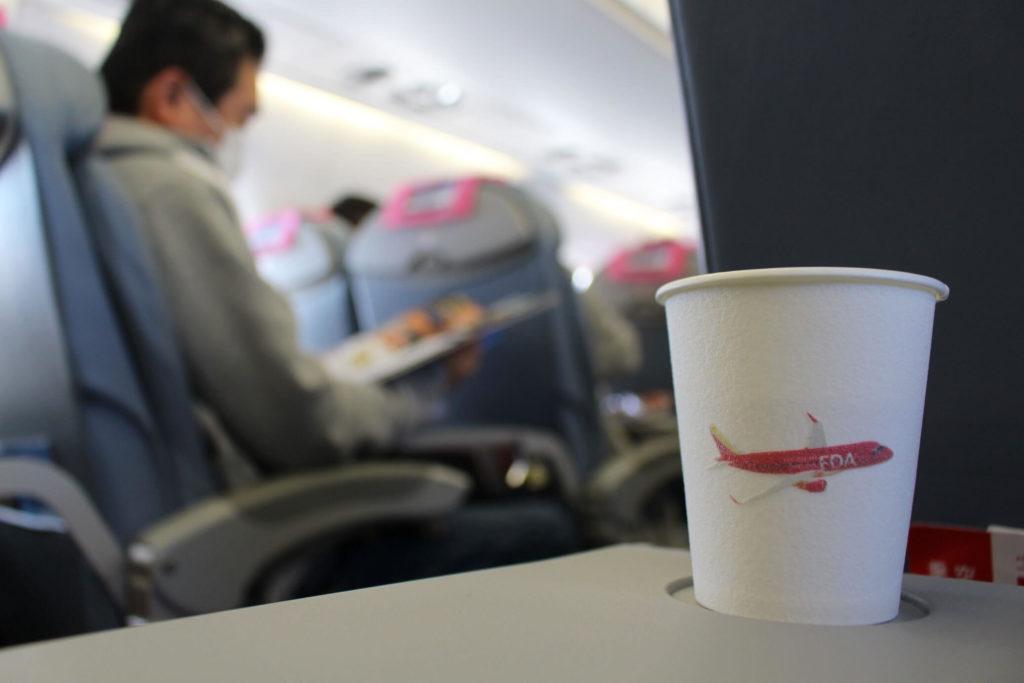 FDAの飛行機内